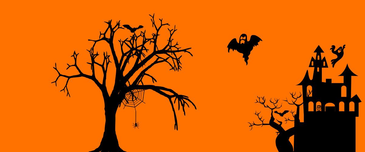 Profiteer nu van HPy Halloween