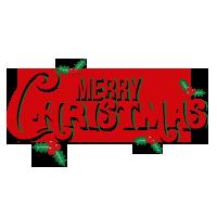 Bekijk al onze kerstaanbiedingen en sla uw slag voor het te laat is!