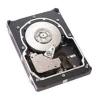 Seagate interne harde schijf: 36.7GB HDD (Refurbished ZG)