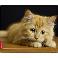 Speedlink SILK Mousepad, Baby Cat