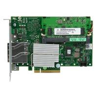DELL netwerkkaart: Single 10GbE Pass-Through Module-kI/O Bays 1 3 or 5 - Kit