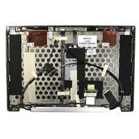 HP notebook reserve-onderdeel: LCD Back Cover