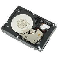 "Lenovo interne harde schijf: 2TB, 7.2K RPM, NL-SAS, 2.5"""