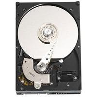 DELL 250GB SATA Hard Drive Kit f/ Optiplex 745 interne harde schijf