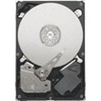 Seagate interne harde schijf: 320GB (Refurbished ZG)