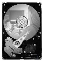 Seagate interne harde schijf: DB35 7200.3 320GB SATA 3Gb/s