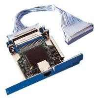 Zebra netwerkkaart: ZebraNet 10/100 Print Server - Blauw, Paars