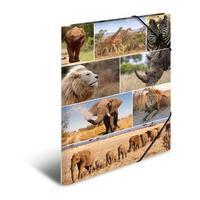 HERMA map: Elasticated folder A3 cardboard africa animals - Multi kleuren