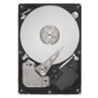 Seagate interne harde schijf: SATA 1TB (Refurbished ZG)