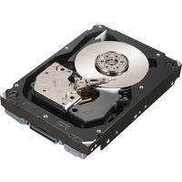 """DELL 146GB SAS 15000rpm 3.5"""" interne harde schijf (Refurbished ZG)"""