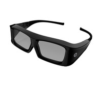 HP 3D Active Shutter Glasses 3D-Brillen - Zwart
