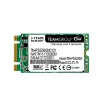Team Group SSD: TEAM M.2 2242 SATA 6Gb/s 256GB