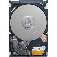 """Seagate interne harde schijf: Desktop HDD 1TB SATA 3.5"""" 7200rpm 64MB"""