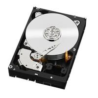 Western Digital interne harde schijf: HDD RE 4TB - Zwart