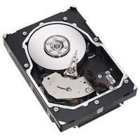 "Netgear interne harde schijf: 1 x 300GB 15K SAS 3.5"" - Zwart"
