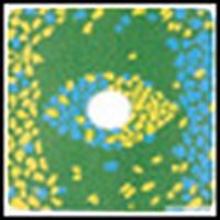Cokin camera filter: CENTRE SPOT Blue/Yellow A 674