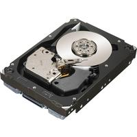 Hewlett Packard Enterprise interne harde schijf: 72GB SAS 15000RPM Refurbished