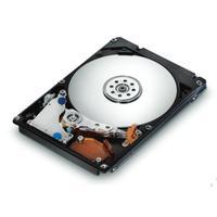 HGST Endurastar J4K100 40GB PATA (0A60185)