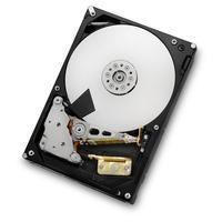 HGST interne harde schijf: Ultrastar 7K4000 2TB - Zwart, Zilver