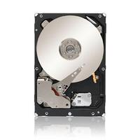 Cisco 80GB interne harde schijf