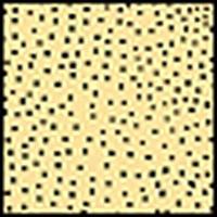 Cokin camera filter: Sunsoft A 694