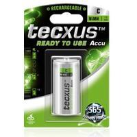 Tecxus batterij: NiMH C 1.2V - Zilver