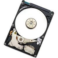 HGST interne harde schijf: Endurastar J4K320 320GB