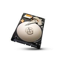 Seagate interne harde schijf: Momentus Thin 500GB