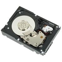 DELL interne harde schijf: 300GB SAS 15000rpm