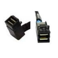 Intel AXXCBL850HDHRT Kabel - Zwart