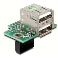 DeLOCK kabel adapter: USB Pinheader