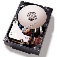 "IBM interne harde schijf: 2TB SATA 3.5"""