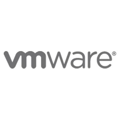 VMware Platinum SnS for vCenter Server 4 Standard, 1Y Garantie