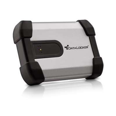 DataLocker ENTERPRISE H350 SSD 500GB - Zwart,Zilver