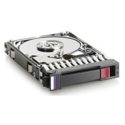 Hewlett Packard Enterprise 498071-001 interne harde schijven