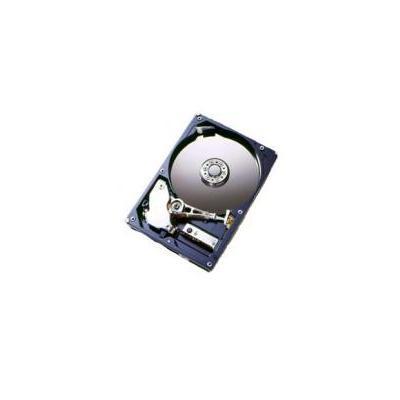 HGST 5K160 Interne harde schijf - Refurbished ZG
