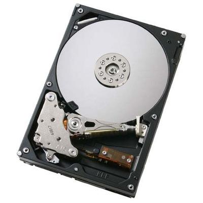 DELL 300GB SAS Hard Drive interne harde schijf