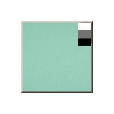 Walimex : 2.85x6m, mint green - Groen