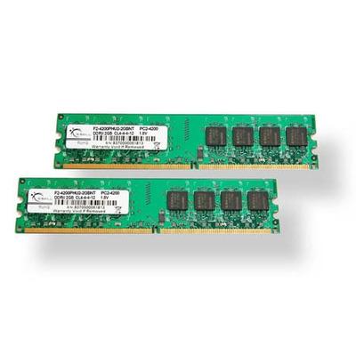 G.Skill F2-6400CL5D-4GBNT RAM-geheugen