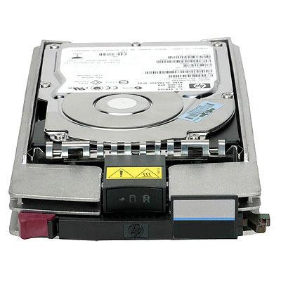 Hewlett Packard Enterprise 244448-002 interne harde schijven