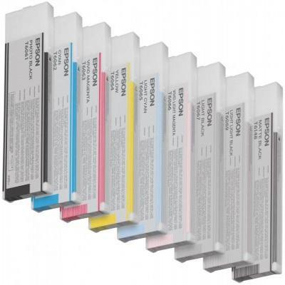 Epson C13T606600 inktcartridge