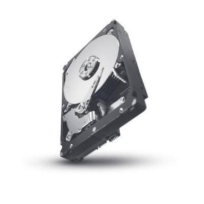 Seagate ST31000424SS-RFB interne harde schijf