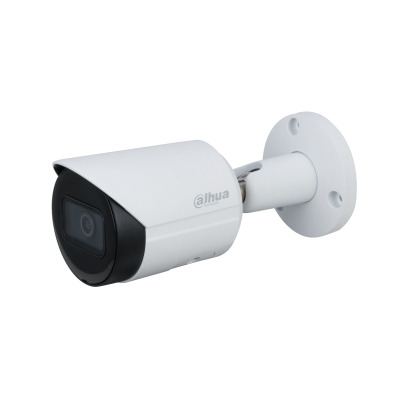 Dahua Technology IPC-HFW2231S-S-S2 IP-camera's