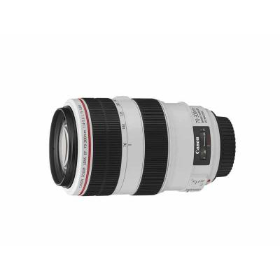Canon camera lens: EF 70-300mm f/4-5.6L IS USM - Zwart, Wit