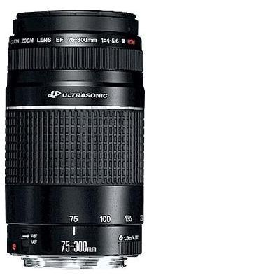 Canon camera lens: EF 75-300mm f/4.0-5.6 III USM - Zwart
