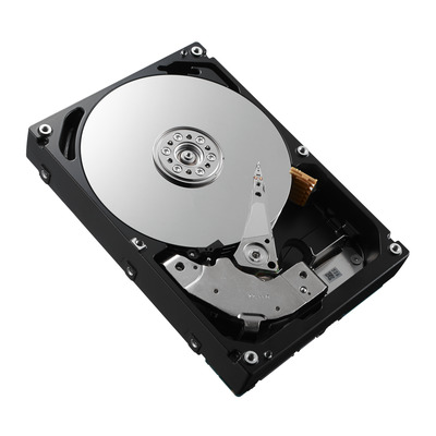 Dell ST31000340NS-RFB interne harde schijf (Refurbished ZG)