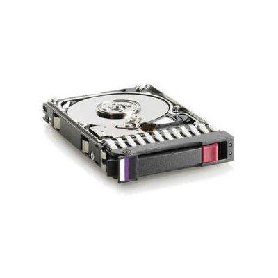 Hewlett Packard Enterprise 454273-001 interne harde schijven