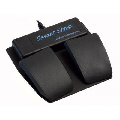 Kinesis FP20A input device
