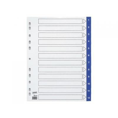 Staples schutkaart: Tabblad SPLS A4 11r 1-12 pp blauw/set12
