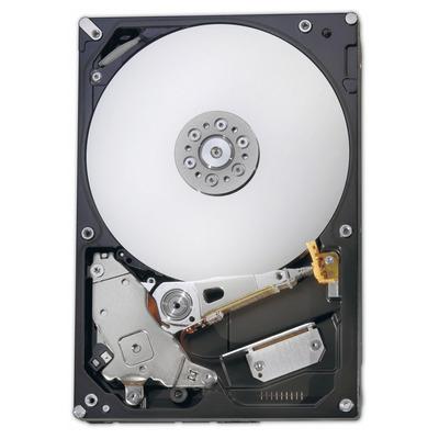 Fujitsu S26361-F3907-L100 interne harde schijven